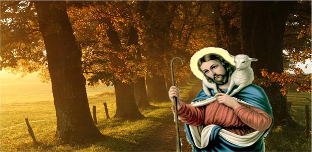 the_good_shepherd