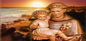 saint_anthony_life