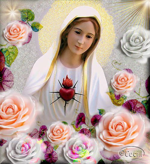 saint_mary_itrust
