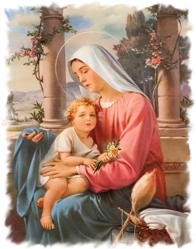 صلاة إلى مريم، معزية الحزانى