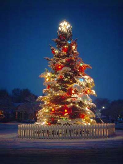 شجرة الميلاد المنحنية