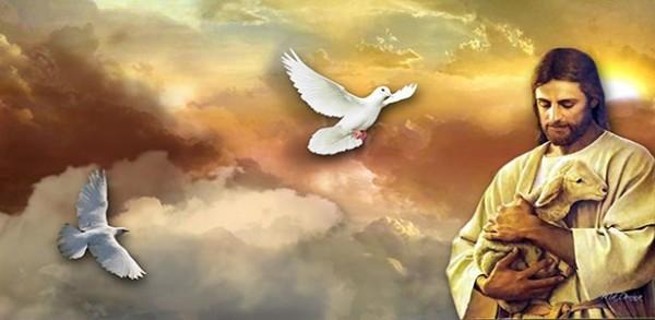 ربي الحبيب يسوع